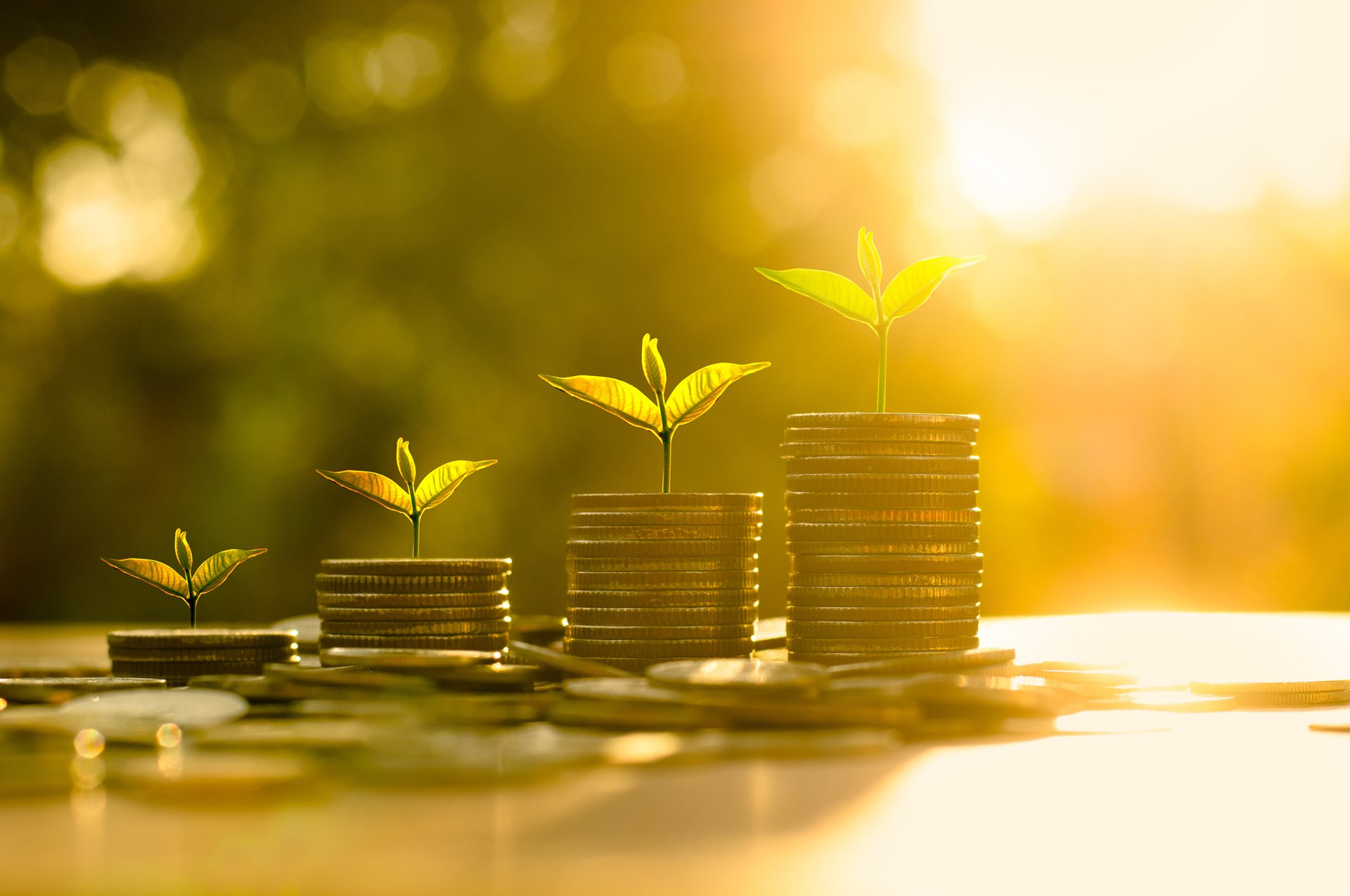 grow your wealth 5 step plan to building wealth.