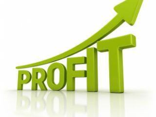 profit average small business